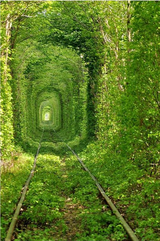 trainway-to-heaven